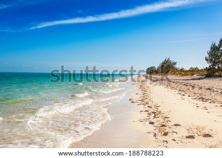 Hoof prints in the sand and a distant group of riders heading down Long Bay Beach on a sunny afternoon in Providenciales, Turks and Caicos - stock photo