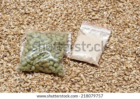 hop, yeast and malt an ingredient for beer.  - stock photo