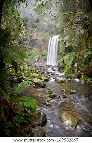 Hopetoun Falls in rainforest in the Great Otway National Park near the Great Ocean Road in Victoria, Australia - stock photo