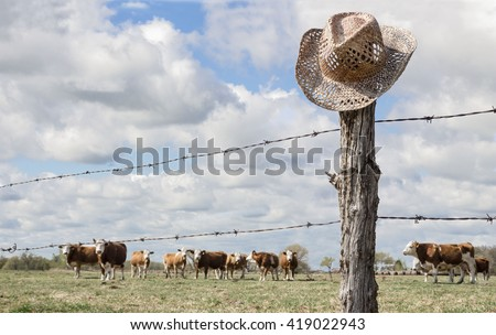 horizontal image of a cowboy hat hanging on a fence post in the forefront while cows are grazing in the background behind the barbwire fence in the summer time. - stock photo