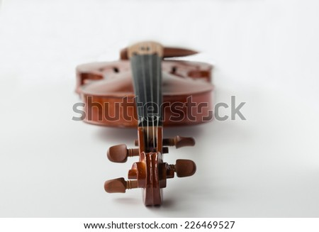 horizontal image of a violin lying flat facing up with the tuning pegs closest to the forefront and the body blurring to the background isolated on white background. - stock photo