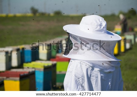 horizontal rear view of one beekeepers in protection suit looking over beehives with bees swarming around - stock photo
