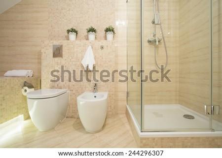Horizontal view of bidet, toilet and shower - stock photo