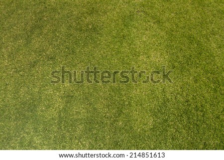 Horizontal view of seamless green grass texture. - stock photo