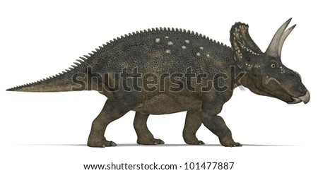 Horned Herbivorous dinosaur Triceratops - stock photo