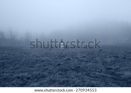 Horror Scene of a Scary Woman in the Misty Forest - stock photo
