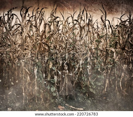 Horror Scene with scary ghost like little girl in a corn field  - stock photo