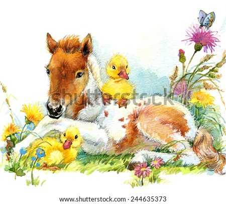 Horse and and ducklings. background with flower. illustration watercolor - stock photo