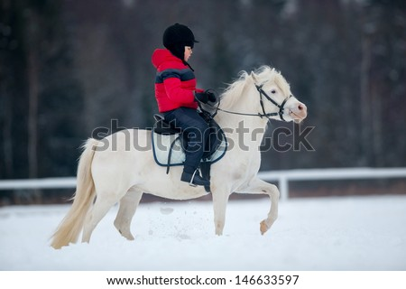 Horse and little boy - horseback riding. - stock photo