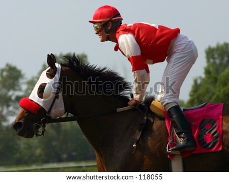 Horse and Rider - stock photo