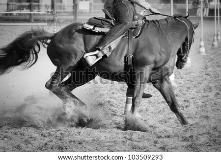 Horse and rider detail during a Pole Bending training - stock photo