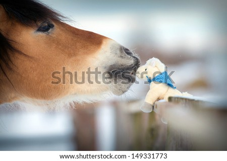 Horse and toy horse in winter, kiss.  - stock photo