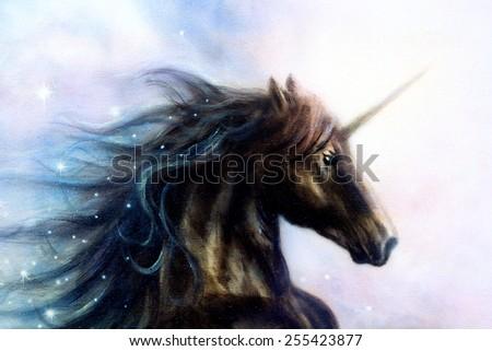 Black Unicorns mc Horse Black Unicorn in Space