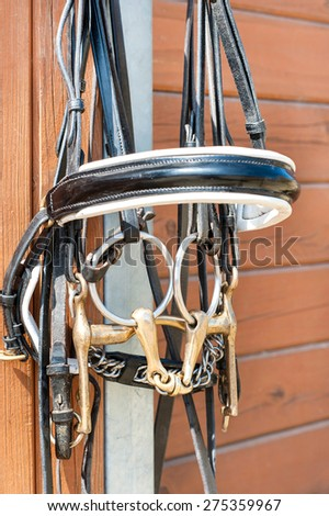 Horse bridle hanging on stable wooden door. Summertime closeup outdoors. - stock photo
