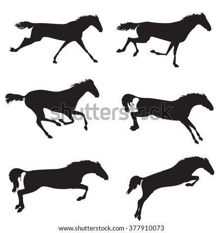Horse different shape. Silhouettes of horses. Black horses on isolated background. Set of wild horses.  horse collection - stock photo