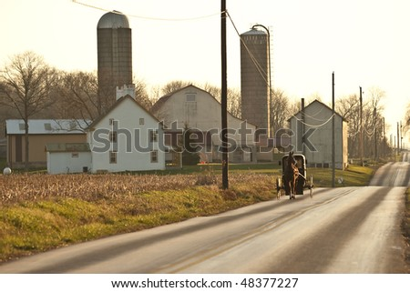 horse drawn amish cart being pulled down road - stock photo