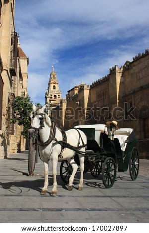 horse driven carriage in Cordoba - stock photo