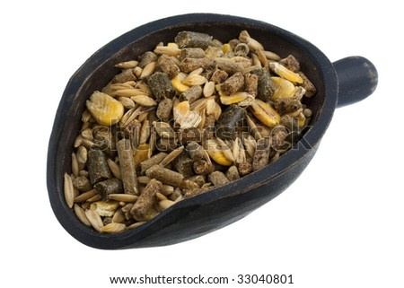 horse feed with corn, barley, oats grain and supplement granulates on a rustic wooden scoop isolated on white - stock photo