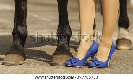 horse hoof feet near the feet of blue woman shoes - stock photo