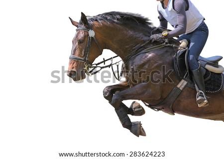Horse jumping on white background. Isolated. - stock photo