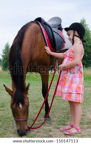 Horse like a best friend - stock photo