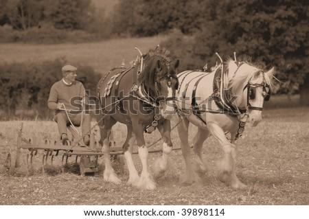 HORSE & PLOUGH - stock photo