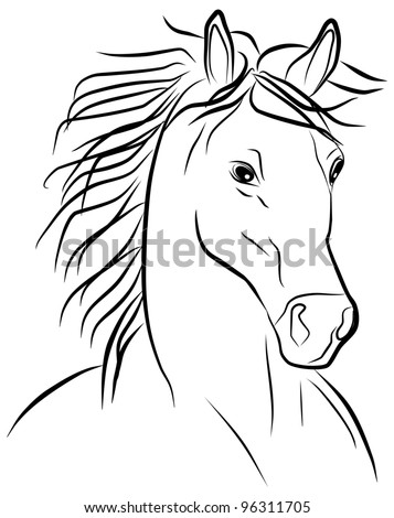 horse portrait - freehand on a white background - stock photo