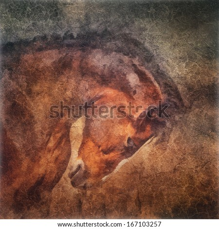 Horse portrait in old oil painting style - stock photo