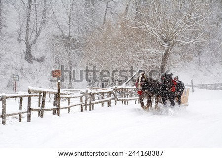 Horse pulled sled in the Transylvanian Alps, Romania - stock photo
