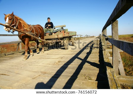 Horse pulling a traditional chariot - stock photo