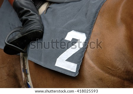 Horse racing, horse with number 2 - stock photo
