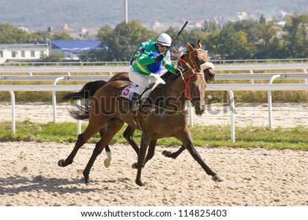 Horse racing in hippodrome Pyatigorsk,Northern Caucasus. - stock photo