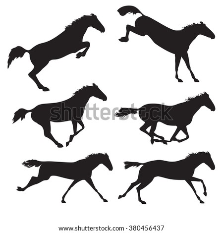 Horse realistic image. Silhouettes of horses. Black horses on isolated background. Set of wild horses.  horse collection - stock photo