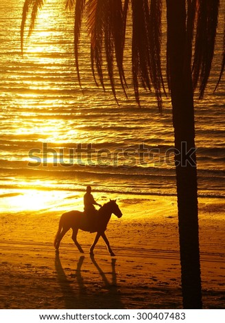Horse rider on tropical beach at sunset - stock photo