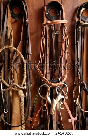 Horse riders complements, rigs, reins, leather over wood - stock photo