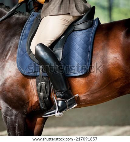 Horse riding detail - stock photo
