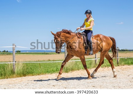 Horse riding sitting trot - stock photo