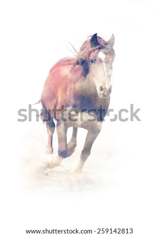 Horse running on white background. Double exposure - stock photo