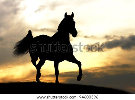 horse silhouette in sunset - stock photo