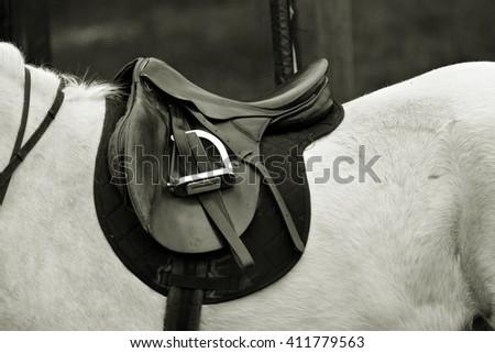Horse stirrups - stock photo
