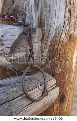 Horse Tie - stock photo