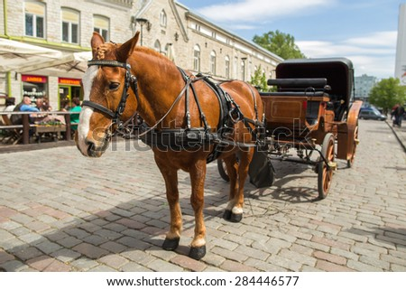 Horse with cart - stock photo