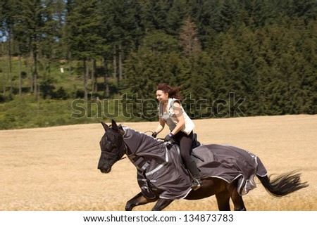 Horseback rides on the field. The horse is protected from insects with blanket-net. - stock photo