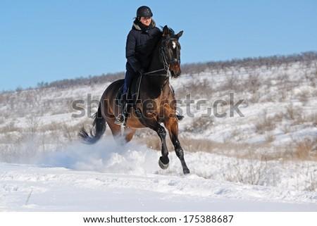 Horseback riding in winter - stock photo