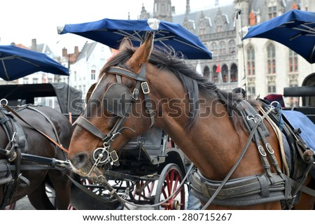 Horses and carts ready to take tourist in a tour of Bruges in Belgium - stock photo