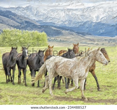 Horses on the range, Montana - stock photo