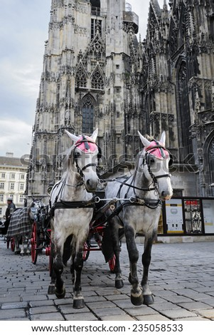 Horses waiting to whisk tourists around the beautiful city of Vienna - stock photo