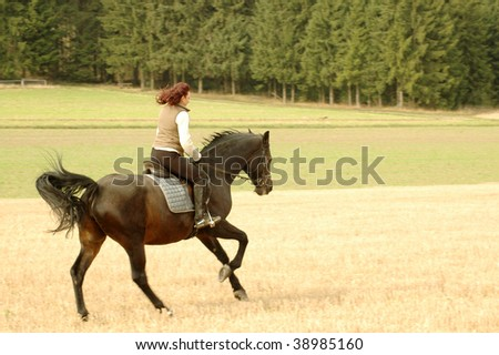 Horsewoman is riding on a horse. - stock photo