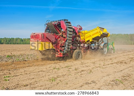 horvesting of potato view on process of work agricultural concept  - stock photo