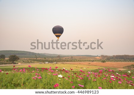 hot air balloon and cosmos flowers field with sunset nature background. - stock photo